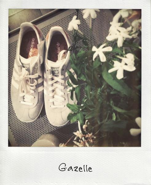 new_gazelle_effected